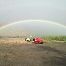 Maui rainbow & pineapple truck by prjncess