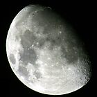 The Moon - 2008-10-09 by AstroGuy