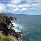 Maui, Hawaii by prjncess