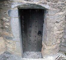 Ross castle door by John Quinn