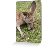 One little Australian Greeting Card