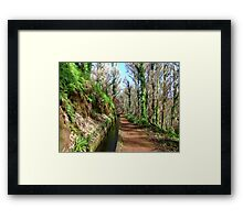 Irrigation duct in Madeira Framed Print