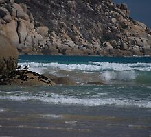 Whiskey Bay - Wilsons Promontory by salsbells69