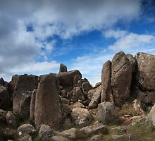 Mt Wellington Rock Scape by Adrianne Yzerman