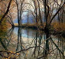 Smoky Reflection by NatureGreeting Cards ©ccwri