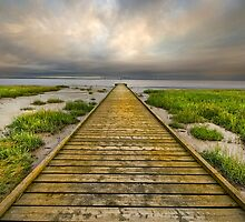 The Old Wood Jetty by eddiej