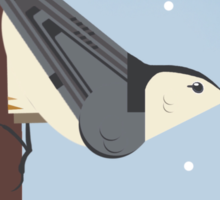 White Breasted Nuthatch Sticker