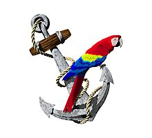 Parrot And Ship Anchor Photographic Print