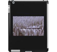 Glacier National Park 3 iPad Case/Skin