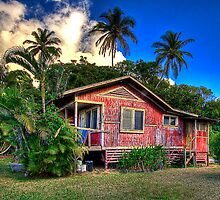 Plantation Life by Randy Jay Braun