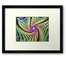 Edged Spiral Framed Print