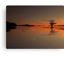 Tequila Moon Canvas Print