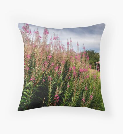 Summer WAS here - Old Winchester Hill, Hampshire Throw Pillow
