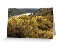 Colorful Colorado Canyon Brush Greeting Card