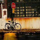 shop rust by Alex Bershaw