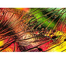 Fall of the Crystal Leaves Photographic Print