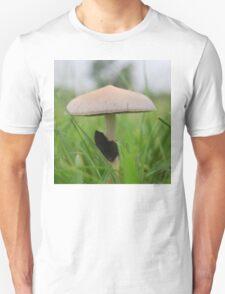 Psilocybe Cubensis in pasture Unisex T-Shirt