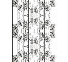 spiderweb stripes Photographic Print