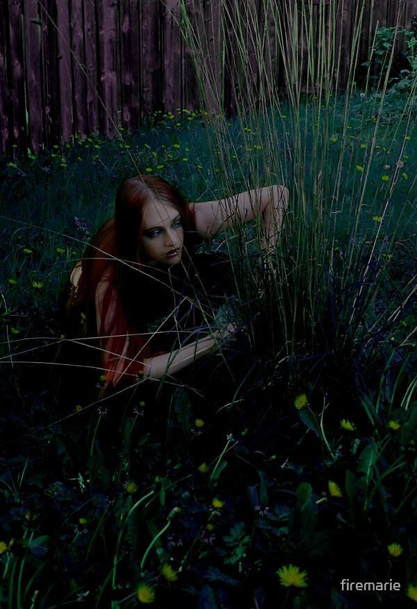 Peek by Lividly Vivid
