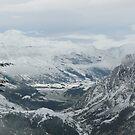 Snow VII by Christine Jones