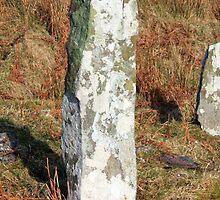 Ardkearagh Ogham Stone by aidan  moran