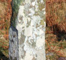 Ardkearagh Ogham Stone Sticker
