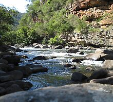 Water Canyon by Eddie Johnson