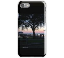 April Twilight in Florida iPhone Case/Skin