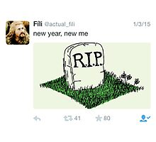 Fili - Tweets Photographic Print
