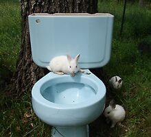 Beware of albino toilet bunnies 3 by InKibus
