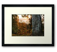 The autumn fog (LITHUANIA) Framed Print