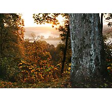 The autumn fog (LITHUANIA) Photographic Print