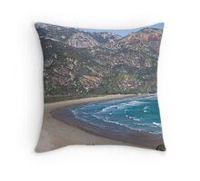 Norman Beach Throw Pillow