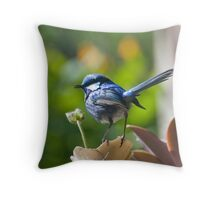 Splendid Wren Throw Pillow