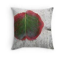 autumn leaf on small marble slab Throw Pillow