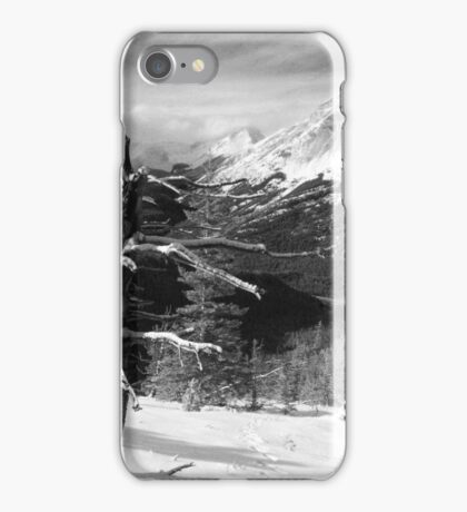 Elevated views iPhone Case/Skin
