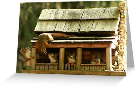 Hanging Around the House by Lori Deiter