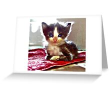 Itty Bitty Greeting Card