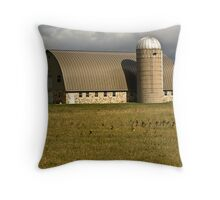 ~ Picture Perfect Barn ~ Throw Pillow