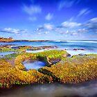 Back Beach by Trevor Middleton