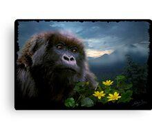 """Hope"" (Mountain Gorilla) Canvas Print"