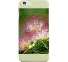 Mimosa ~  An Exotic Flowering Tree iPhone Case/Skin
