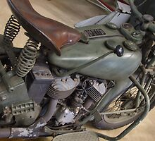Old Timers Indian - war relic by Karen Stackpole