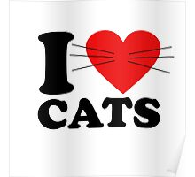 Funny - I Love Cats with moustache Poster