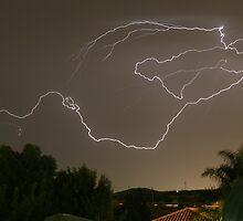 Lightning Strikes by Barry  Dux