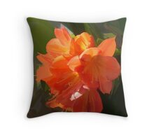 abstract of Clivia Throw Pillow