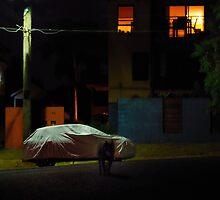 The loner by David  Symons