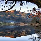 Loch Reflections by Cat Perkinton