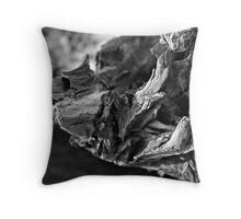 Driftwood Textures 2 Throw Pillow