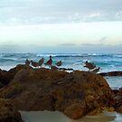 Ocean View by Nikki Collier